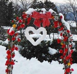 heartsnow1e.jpg
